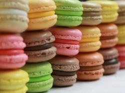 The image for French Macaron Workshop